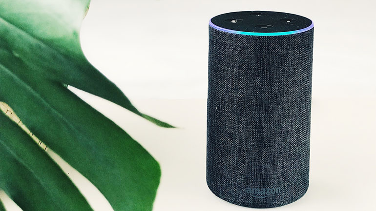Hedgehog Digital Voice Search - Amazon Alexa