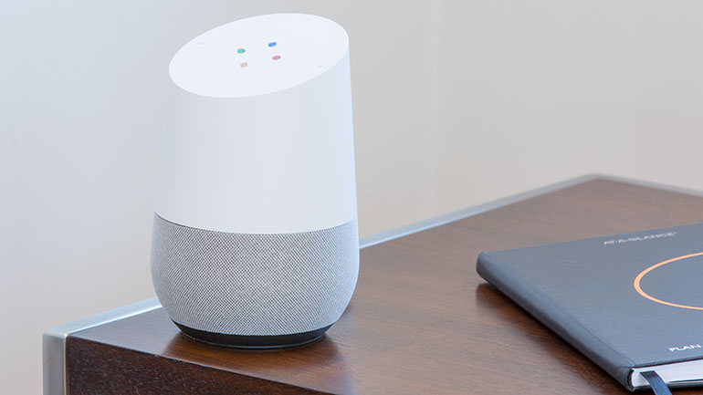 Hedgehog Digital Voice Search - Google Home