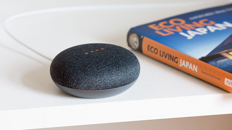 Hedgehog Digital Voice Search - echo dot